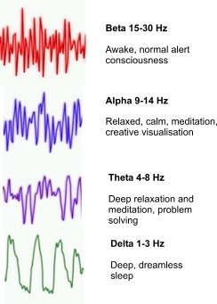 Brain Waves and Other Brain Measures – How Do You Think?